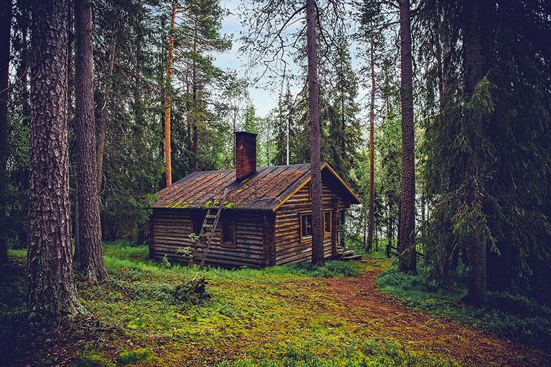 retour à la nature avec le bois