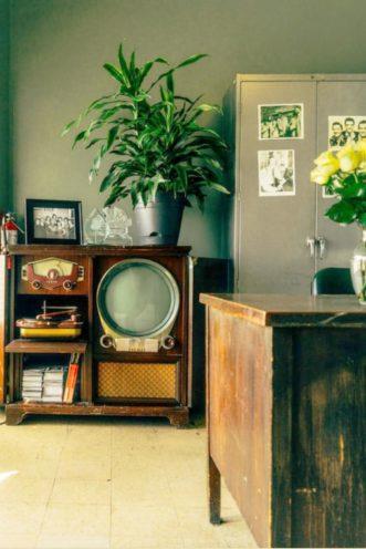 Intérieur avec mur vert et mobilier en bois foncé par Vallon Faure Menuiserie