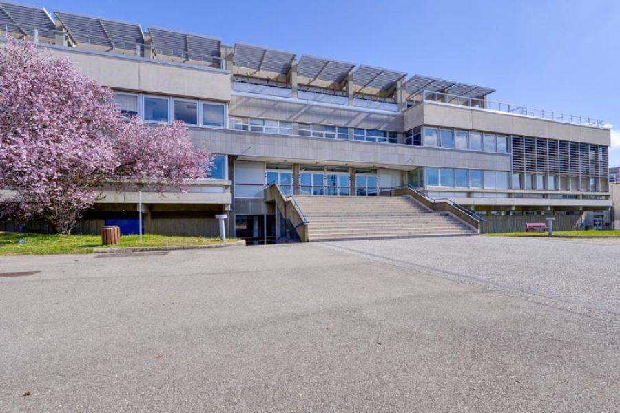La réhabilitation de l'École Centrale de Lyon